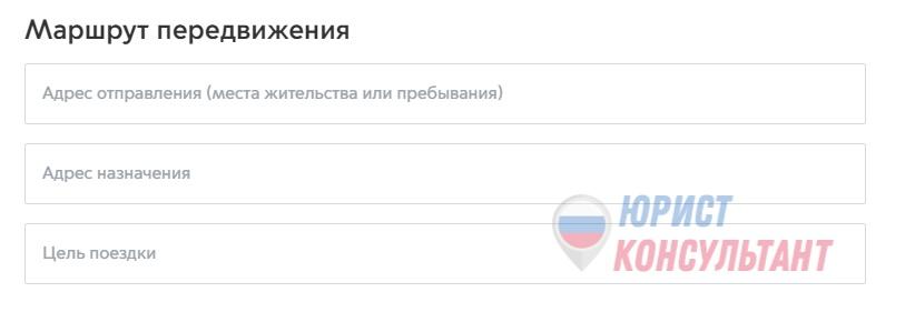 Фото 5: порядок выдачи пропусков для передвижения по Москве